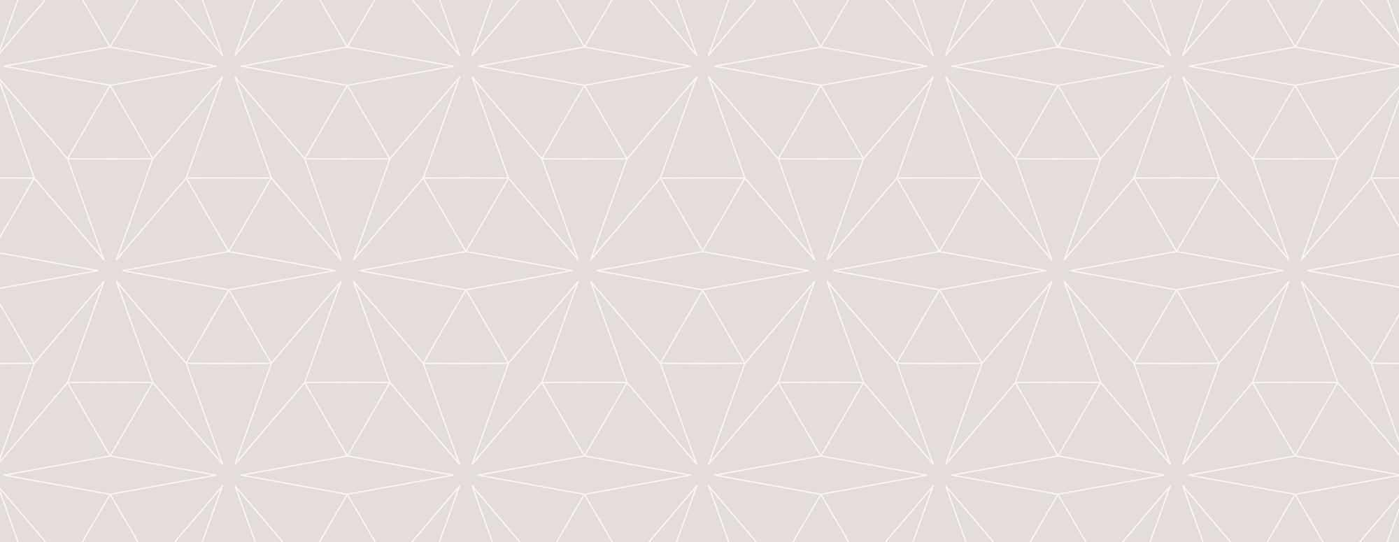 Lion House Pattern Design